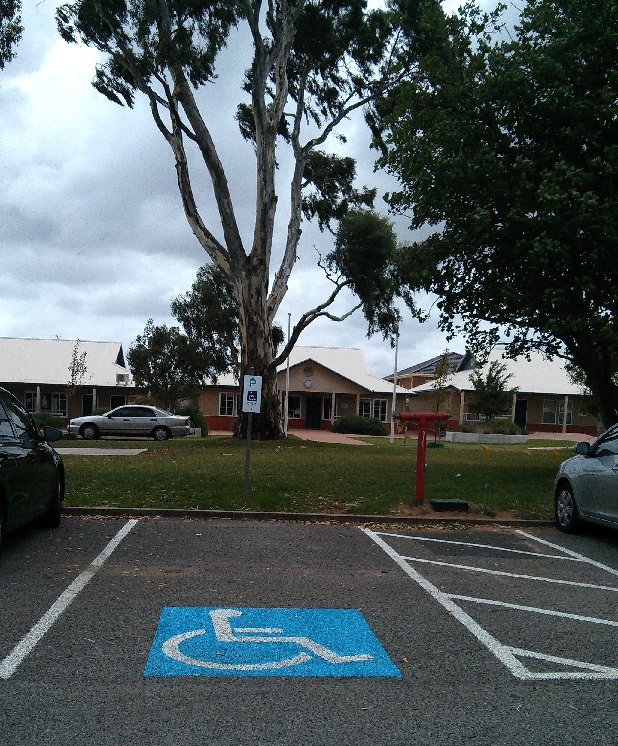 the accessible car park at cedar college is near the site of the fallen tree