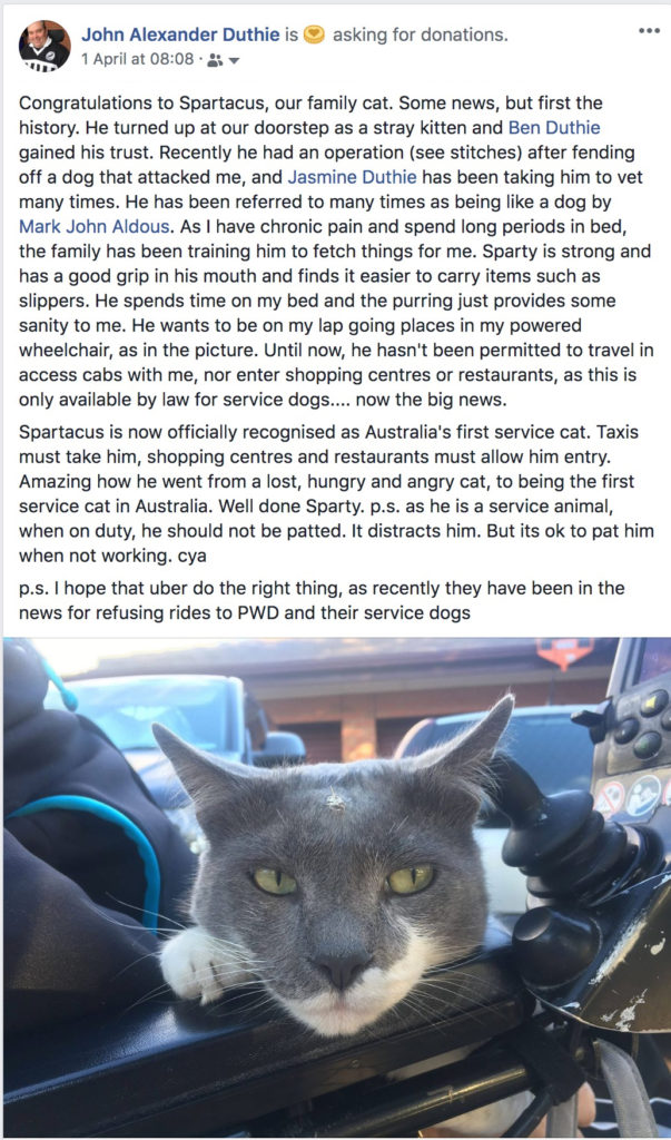 "The facebook post of mine on 1 April reads ""Congratulations to Spartacus, our family cat. Some news, but first the history. He turned up at our doorstep as a stray kitten and Ben Duthie gained his trust. Recently he had an operation (see stitches) after fending off a dog that attacked me, and Jasmine Duthie has been taking him to vet many times. He has been referred to many times as being like a dog by Mark John Aldous. As I have chronic pain and spend long periods in bed, the family has been training him to fetch things for me. Sparty is strong and has a good grip in his mouth and finds it easier to carry items such as slippers. He spends time on my bed and the purring just provides some sanity to me. He wants to be on my lap going places in my powered wheelchair, as in the picture. Until now, he hasn't been permitted to travel in access cabs with me, nor enter shopping centres or restaurants, as this is only available by law for service dogs.... now the big news. Spartacus is now officially recognised as Australia's first service cat. Taxis must take him, shopping centres and restaurants must allow him entry. Amazing how he went from a lost, hungry and angry cat, to being the first service cat in Australia. Well done Sparty. p.s. as he is a service animal, when on duty, he should not be patted. It distracts him. But its ok to pat him when not working. cya p.s. I hope that uber do the right thing, as recently they have been in the news for refusing rides to PWD and their service dogs"""
